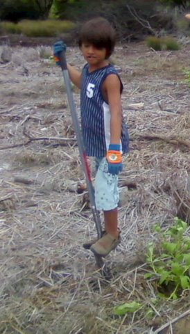 A young man helps the Maui Coastal Land Trust protect Hawaiian coastal lands.