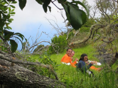 Volunteer while on Vacation in Hawaii! Voluntourism opportunities and projects for Hawaii vacationers.